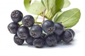 Ariona berries